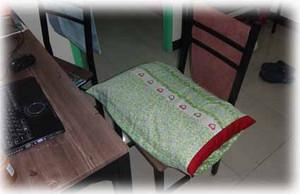 Pillow170627