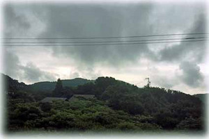Tsuyu1707