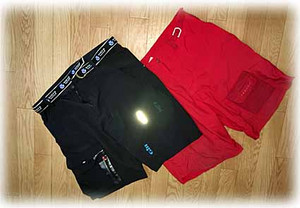 Shorts170809