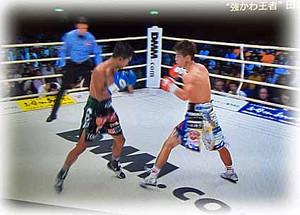 Boxer170913